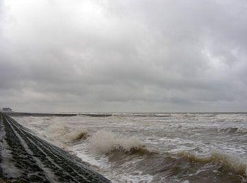 Storm aan zee von Johan Töpke