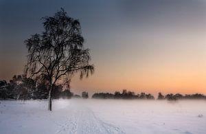 Winter in Limburg