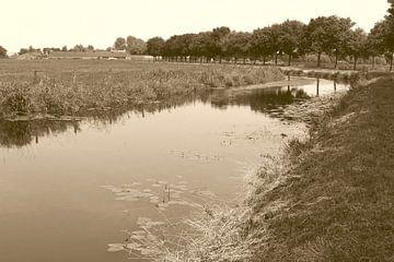 Polderlandschap in sepia