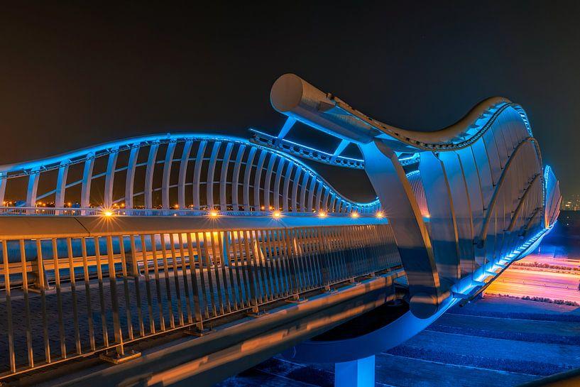 Meydan Bridge & Beyond van Michael van der Burg
