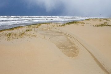 Jong duin op strand met donkere hagellucht van Menno van Duijn
