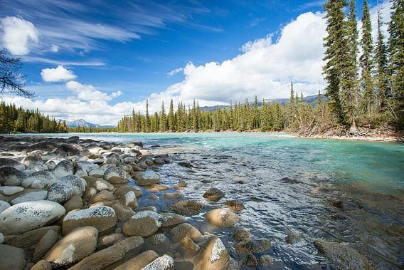 Athabasca River Jasper van Louise Poortvliet