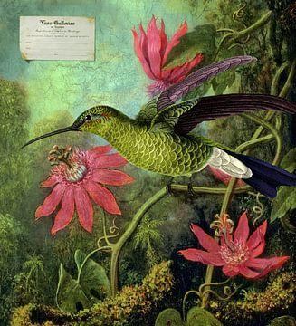 A Bird Painted sur Marja van den Hurk