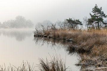 Wintermorgen von Marian Schepens