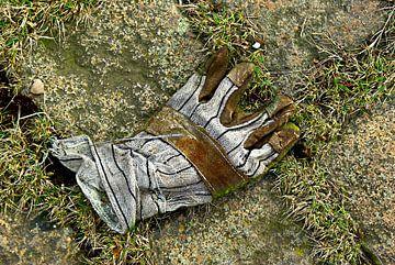 Handschoen 003 van Norbert Sülzner
