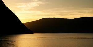 Sognefjord van