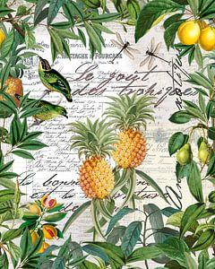 Tropische vruchten van