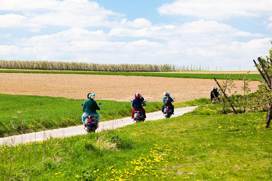landschap met scooters