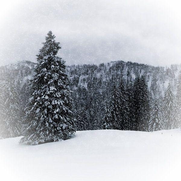 Wintermärchen HEMMERSUPPENALM IV von Melanie Viola