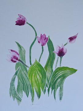 Tulpen von Frank van Veen