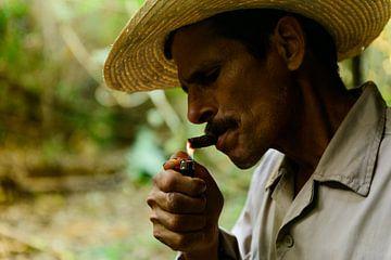 Cigar Man, Pinar del Rio, Cuba von Frank Laurens