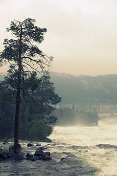 landschap Zweden von joost vandepapeliere