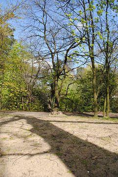 The Woods von Lyn Van Veldhoven