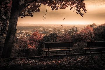 Herbst in Prag auf dem Petřín von Martijn van Steenbergen