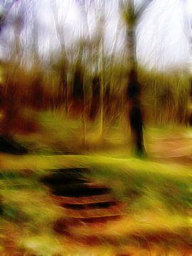 Stufen im Wald 11 von Claudia Gründler