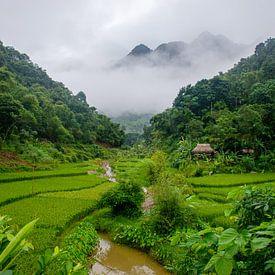 Bergdorpje in Pu Luong, Vietnam, Azië van Ellis Peeters