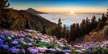 Landschaft von der Insel Teneriffa auf den Kanaren zum Sonnenuntergang. von Fine Art Fotografie