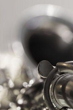 Saxophon von Ingrid Van Damme fotografie