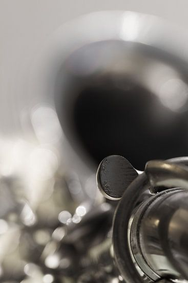Saxofoon van Vandain Fotografie