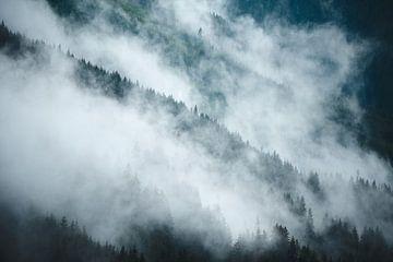 Alpiner Nebel 2 von Bart Rondeel