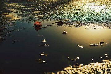 Na de regen komt de zon van Wijnand Kroes