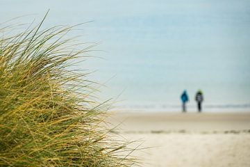 Landscape with dunes on the island Amrum van