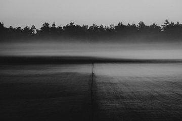 Twente Landschaft mit Nebel von Holly Klein Oonk