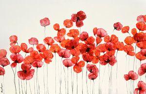 """""""Flowers"""" van Sophie Duplain"""