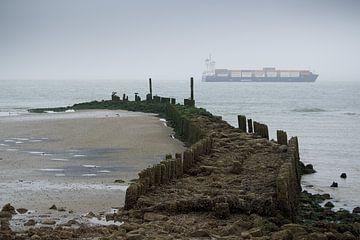 Zicht op zee van Talitha Blok