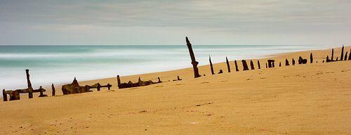 Trinculo Shipwreck von Chris van Kan