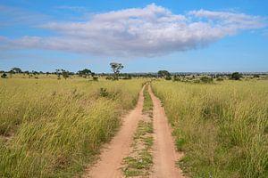 Parc national de Murchison Falls, Ouganda sur Alexander Ludwig