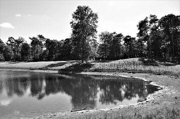 Zwart Wit Landschap von DoDiLa Foto's