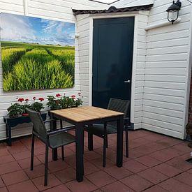 Kundenfoto: Getreidefelder in der Sonne - Groningen, Niederlande von Bas Meelker, auf leinwand