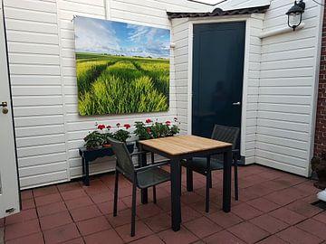 Klantfoto: Graanvelden in de zon - Groningen, Nederland van Bas Meelker