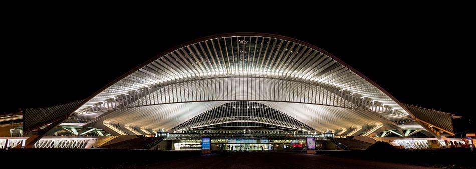Panorama by Night van de entree van Station in Luik