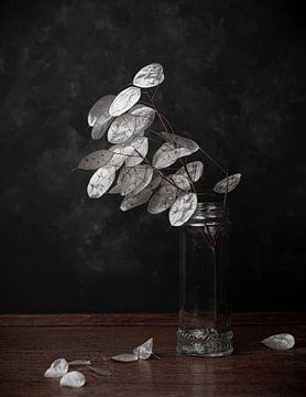Honesty, still life in black and white van Joske Kempink