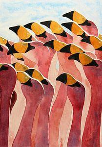 Groep flamingo's