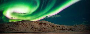 Aurora panorama van