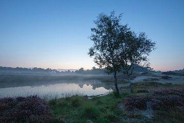 Zonsopkomst bosmeertje Heidestein Zeist Driebergen van Peter Haastrecht, van