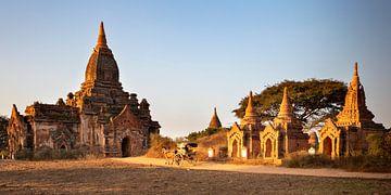Paard en wagen in Bagan van Antwan Janssen