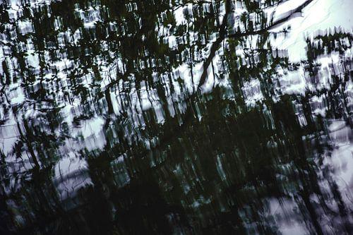 Chaos in het water