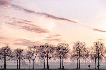 Bäume und Vögel nisten von Wouter Bos