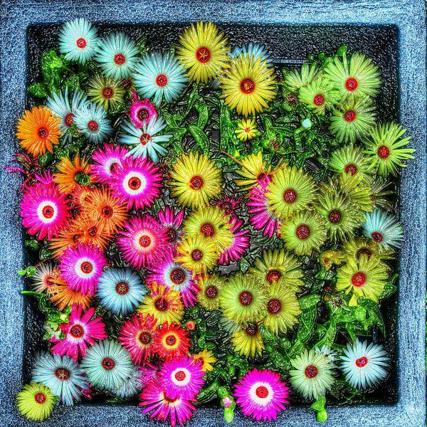 Digital Art Medium Bloemen van Hendrik-Jan Kornelis