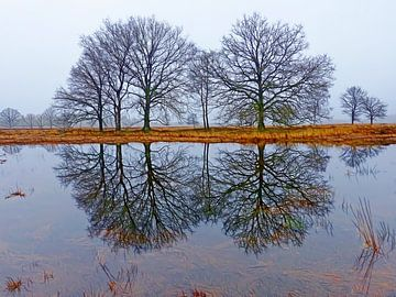 Bespiegelingen (Twee bomen spiegelen ven) van Caroline Lichthart