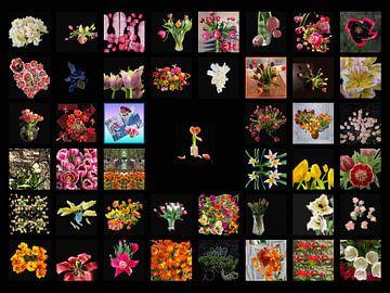 Projekt #RGBMetTulp2019 von Susan Hol