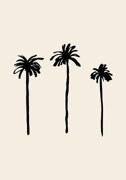 Palmbomen, 1x Studio van 1x