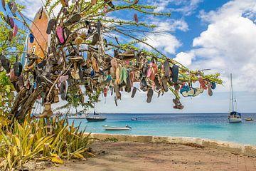 Boom versierd met slippers in landschap aan boulevard in Kralendijk op Bonaire van Ben Schonewille