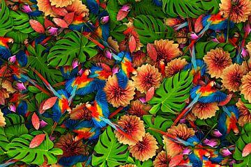 Papageien-Dschungel von Leon Brouwer