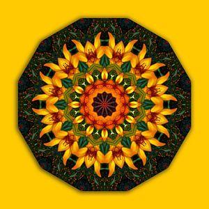 Orange and Yellow Iris, Floral mandala-style, Flower Mandala