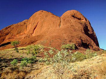 Indrukwekkende rotsen in het nationaal park Kata Tjuta, Australië van Rietje Bulthuis
